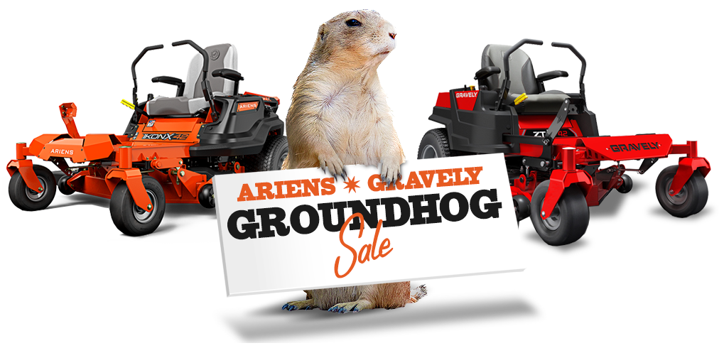 Groundhog holding sale sign